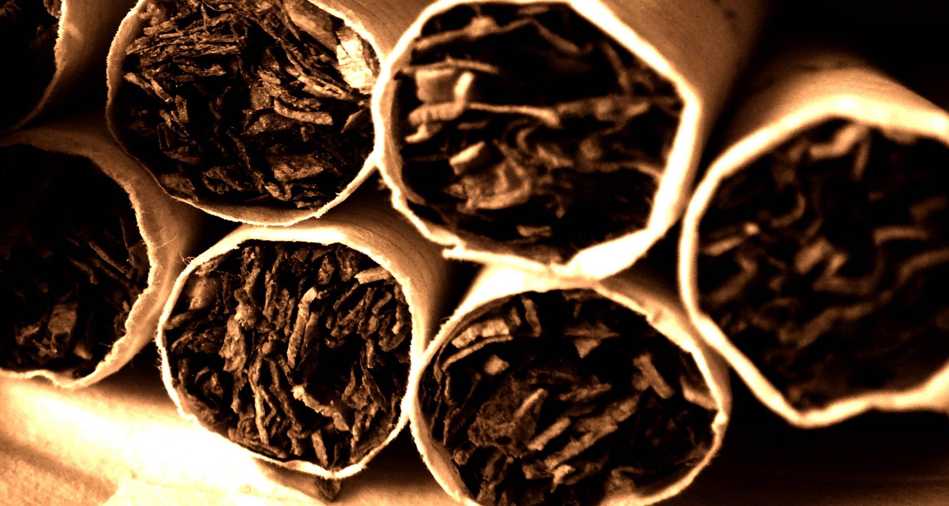 fondo-tabaco-grande